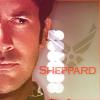 Desi: SGA - Shep