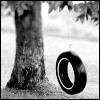 tire swing;