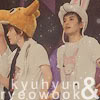 kyu&wookie