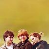 HP | trio