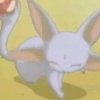 Clarrie: Ruby Carbuncle: Cuteness