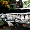 Impala :D