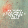 Words Responsible Adult