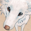 paint_and_paws userpic