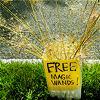 carma_baby: Free Magic Wands