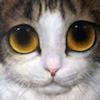 keane kitty