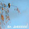 rheidae userpic