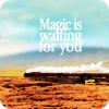 hp:magicis_waiting