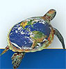 черепаха-путешественница