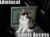 network admin cat