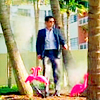 The Coalition For Disturbing Metaphors: Burn Notice Flamingo