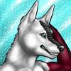 dingra userpic