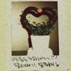 AlShin: flowerpot