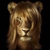 гламурная львица