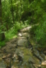 hyacinthhart userpic