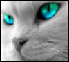 doonlet userpic