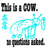 chinx_00: this is a cow