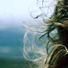 windswepthair userpic