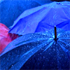 txtls: rain blue umbrellas