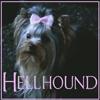 SPN Hellhound
