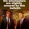 Winchesters are amused