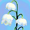 invisble_friend userpic