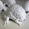 мозги на ножках