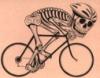 bikingbettie userpic