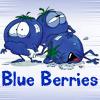 Carrie Leigh: blueberrie