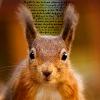ebonymoonblade: Squirrels - Text ears