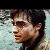 Harry Potter Daily