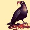 misc - raven