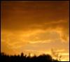 yellowdusk userpic