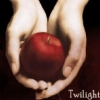 Twilight Big Bang Fanfiction
