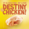 Merlin Destiny & Chicken