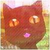 Cat / Arrow