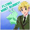 England!Flying Mint Bunny