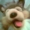 Collie Puppet