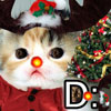Christmas Fwee Cat