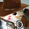 Cowboy Fwee Cat
