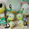 turtwig collection