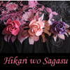 hikariwosagasu userpic