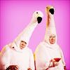 allie calls me the Sasstress.: boston legal; flamingos!