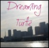 dreaming_turtle