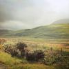 i need a raincoat.: Scotland - Isle of Mull