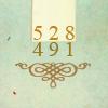 528491