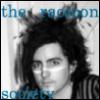 raccoon society