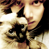 heechul plus cat