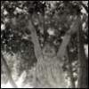 palomina_nastya userpic