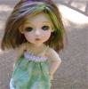 Wren - Green & Curious